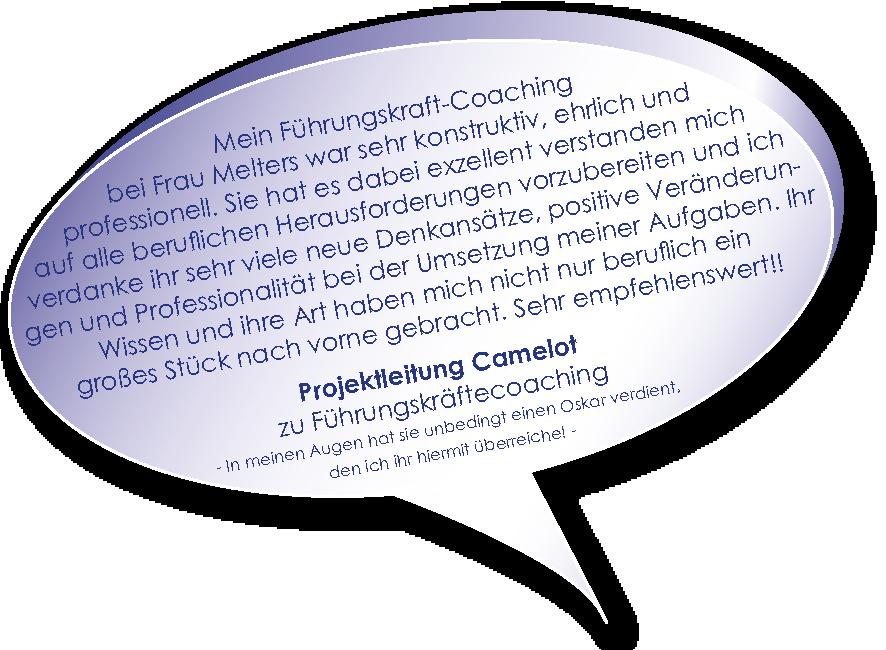 Testimonial der Camelot Projektleitung zu Führungskräftecoaching von Melters und Partner
