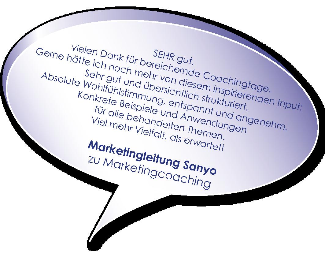 Testimonial von Sanyo zum Marketingcoaching von Melters und Partner